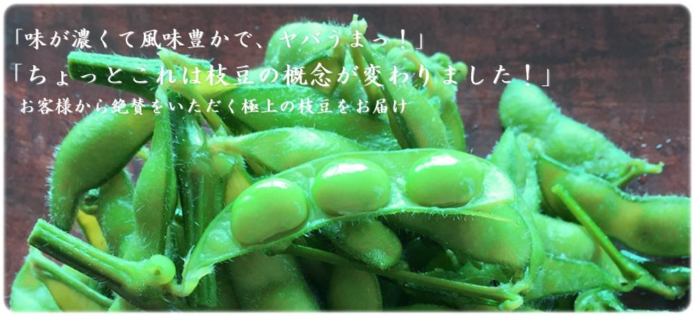 「はねっ娘会」の枝豆のこくの深さと極上の味わいを通販でお届けします。