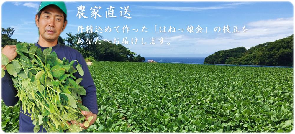 農家直送!岩崎ファームは美味しい枝豆を通販でお届けします。