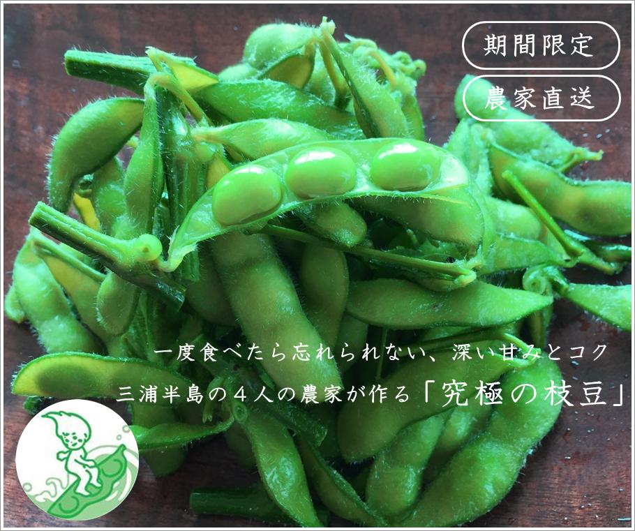神奈川県三浦半島から「はねっ娘会」のブランド枝豆を通販でお届けします。