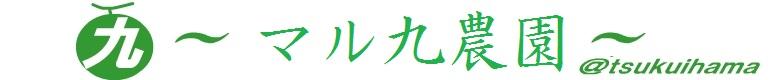 マル九農園通販サイト